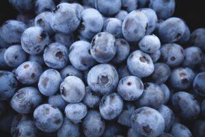 blaubeeren , früchte , blau , beeren , frisch , reif , organisch , ernte , produzieren , frisches erzeugnis , frische beeren , nahaufnahme , gesund , lebensmittel , ernährung , antioxidans , vitamine , saftig , süß , natürlich ,